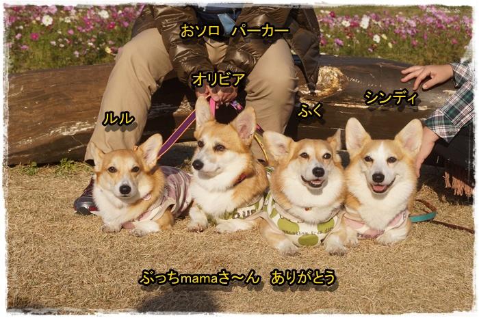 DSC04000.jpg
