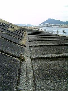 長良川沿い徒歩通勤_開拓ルート_05