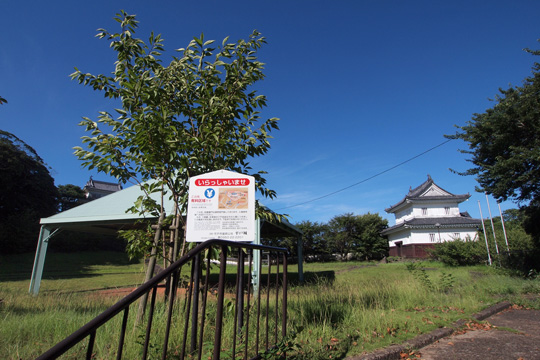 20110812_hidrado_castle-47.jpg