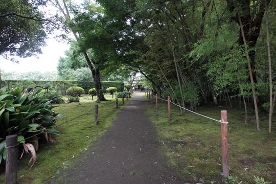 20110814_obi-33.jpg