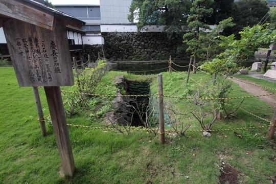 20110814_oita_castle-08.jpg