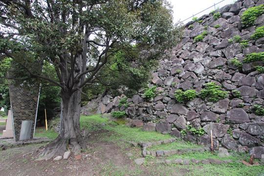20110814_oita_castle-25.jpg