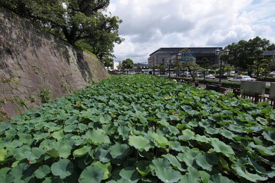 20110816_turumaru_castle-10.jpg