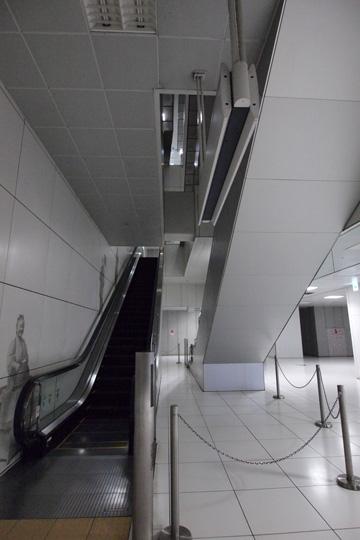 20110828_motomachi_chukagai-16.jpg