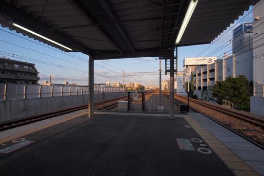 20110911_sakura_shukugawa-0.jpg