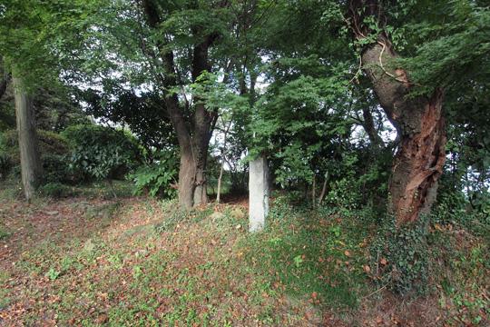 20110917_kanayama_castle-79.jpg