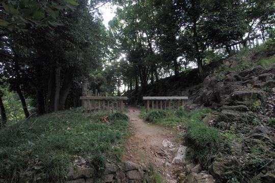 20110917_kanayama_castle-82.jpg