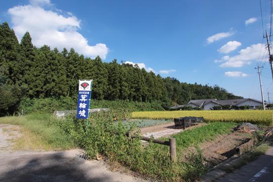 20110918_minowa_castle-59.jpg