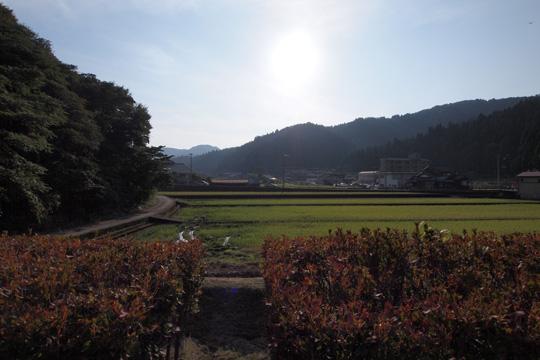 20111009_ichijodani_site-141.jpg