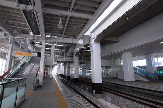 20111224_otagawa-03.jpg