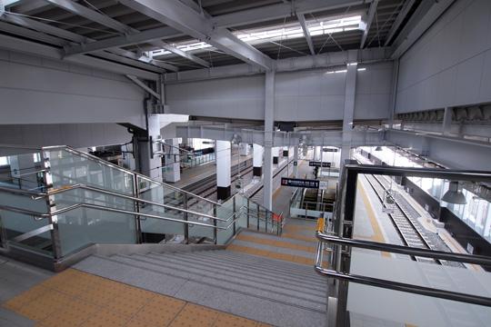 20111224_otagawa-13.jpg