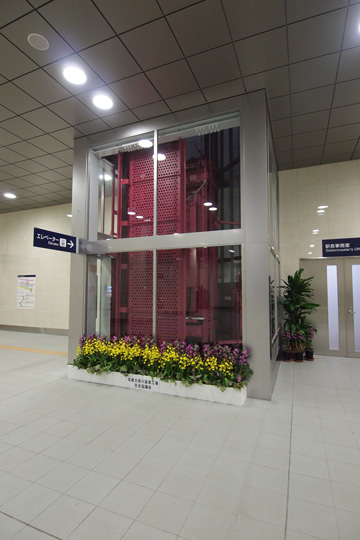 20111224_otagawa-33.jpg
