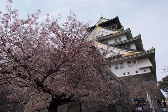 20120415_osaka_castle-02.jpg