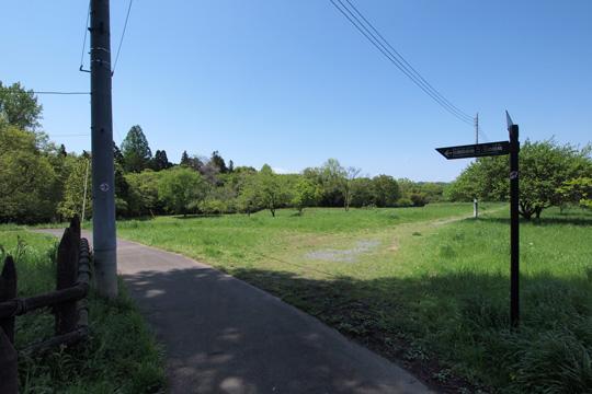20120505_hachigata_castle-10.jpg