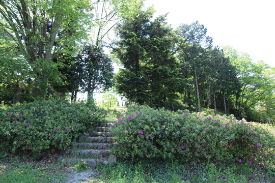 20120505_hachigata_castle-15.jpg