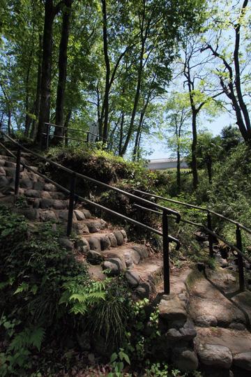 20120505_hachigata_castle-33.jpg