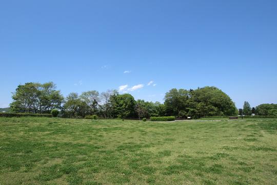 20120505_hachigata_castle-55.jpg