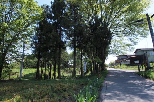 20120505_hachigata_castle-60.jpg