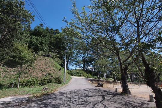 20120917_iiyama_castle-07.jpg
