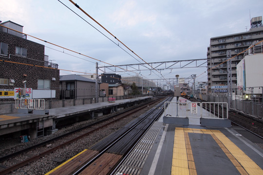 20121123_kikuna-01.jpg