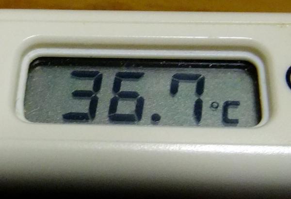 体温計02
