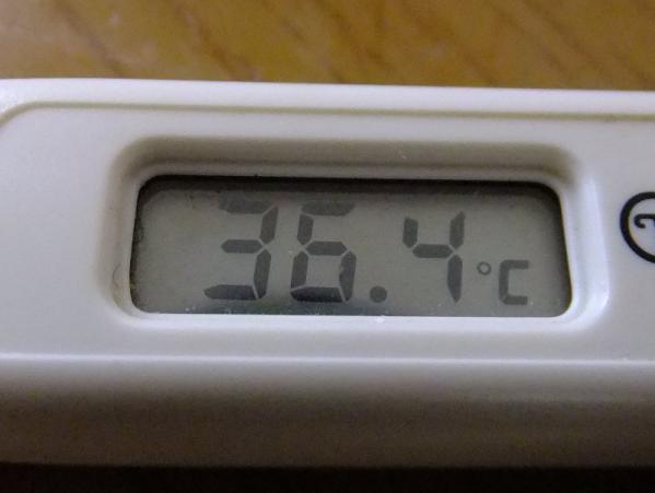 体温計03