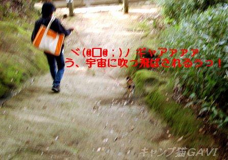 100503_0303.jpg