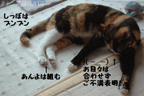 100617_6859.jpg