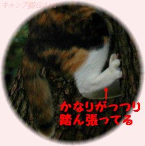100710_1305b.jpg