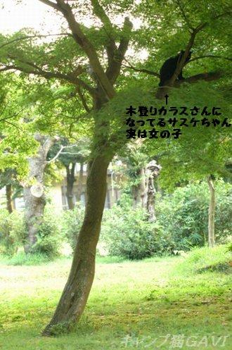 100905_5656a.jpg
