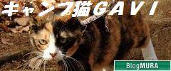 b_gavi_201003_36.jpg