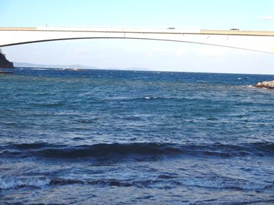 魚釣りと真鶴 福浦漁港 みなと食堂 イタリアン