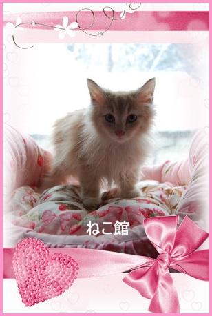 blog3_201412241007310d0.jpg