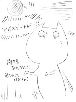 bunyaneko_43.jpg