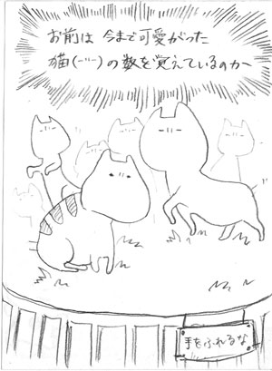 bunyaneko_8.jpg