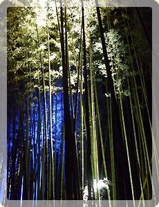 冬の京都_2