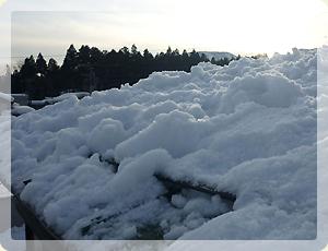雪降ろし_5
