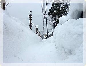 雪・雪・雪_1