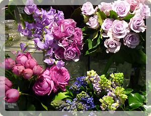 お花屋さん_1