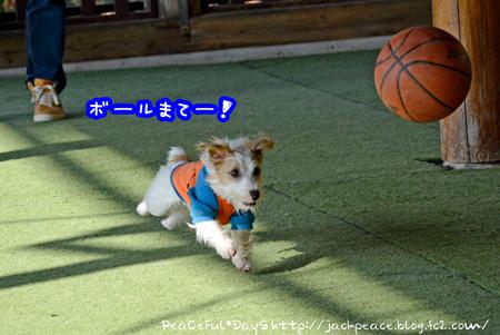 140128_yuasa2.jpg
