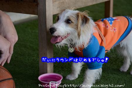 140128_yuasa4.jpg
