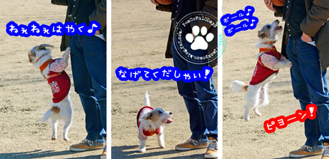140129_yuasa.jpg