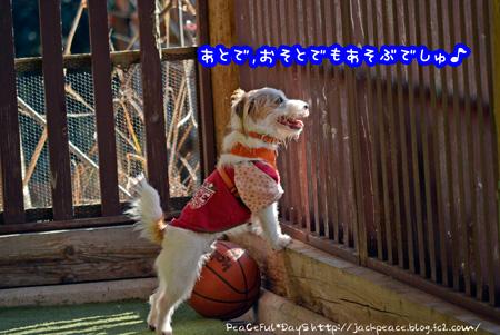 140129_yuasa10.jpg