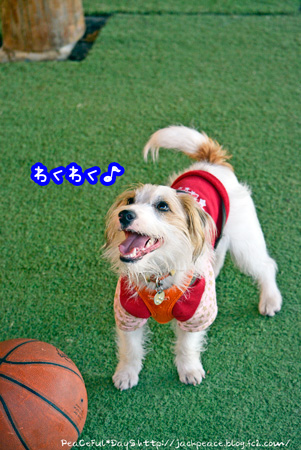 140129_yuasa2.jpg