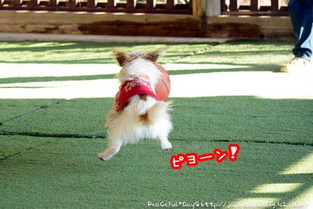 140129_yuasa9.jpg