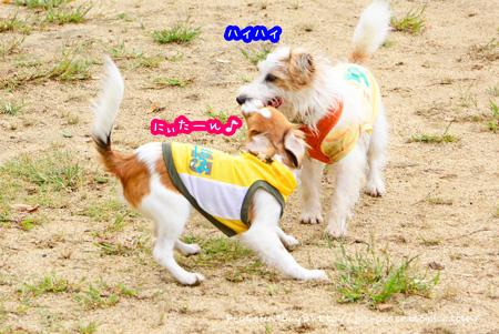 141014_yuasa12.jpg