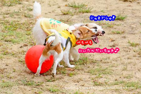 141014_yuasa13.jpg