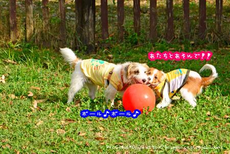 141014_yuasa15.jpg
