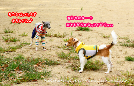 141014_yuasa16.jpg
