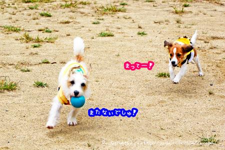 141014_yuasa2.jpg